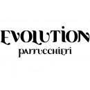 Logo dell'attività evolution parrucchieri