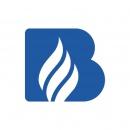 Logo dell'attività Produttore di rilevatore di fughe gas
