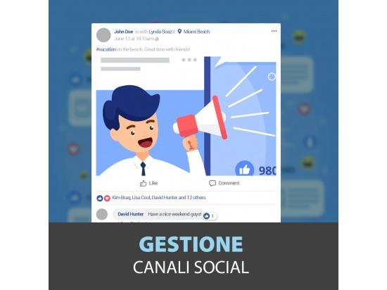 Gestioni Pagine Social Media Marketing...