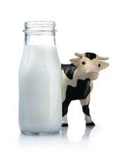 Relazione tra consumo di latte di mucca e Sclerosi Multipla...forse colpa della Butirrofilina del latte molto simile alla Mog