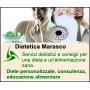 Logo Studio Marasco, Dietetica,Fitness e Benessere