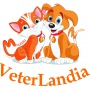Logo VeterLandia Ambulatorio Veterinario
