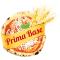 Logo social dell'attività Primabase