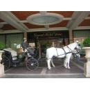 Logo dell'attività  Noleggio Carrozze White Horse
