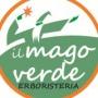 Logo IL MAGO VERDE DI DOMENICO BALZANO