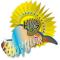 Logo social dell'attività Hobbygame sviluppo videogiochi  personalizzati
