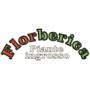 Logo ingrosso piante ornamentali consegne con furgoni isotermici in tentata vendita