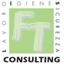 Logo dell'attività FT Consulting