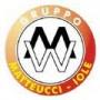 Logo Matteucci srl - Gruppo Iole Matteucci