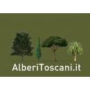 Logo dell'attività AlberiToscani