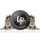 Logo dell'attività Leoni Production