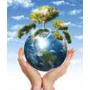 Logo Eco Service Sud Srl