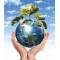 Logo social dell'attività Eco Service Sud Srl
