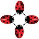 Logo dell'attività Ludoteca Le Coccinelle