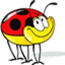 Logo dell'attività LA COCCINELLA di GIOVANNA COLAPIETRA