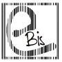 Logo Ebis informatica