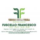 Logo dell'attività INGROSSO SEMENTI FUSCELLO FRANCESCO
