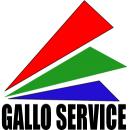 Logo dell'attività Service Audio Luci-Strutture