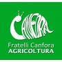 Logo Prodotti per l'agricoltura e la zootecnia, nonché Pellet, bombole di GPL ad uso domestico etc.
