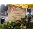 Logo dell'attività Le garden flower and fruit