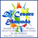 Logo dell'attività Autonoleggio Edmondo Di Cesare