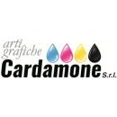 Logo dell'attività ARTI GRAFICHE CARDAMONE SRL