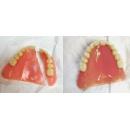 Logo dell'attività Odontotecnico Brambilla Fabio