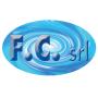 Logo F.C. S.r.l