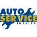 Logo dell'attività auto service