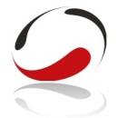 Logo dell'attività Sincron Inova S.r.l