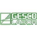 Logo dell'attività Gesco Labor S.a.s. di DR.SSA Paola Salomoni & C
