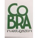 Logo dell'attività Cobra srl