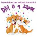 Logo dell'attività Toelettatura Divi a 4 Zampe