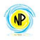 Logo dell'attività Natural Power srl