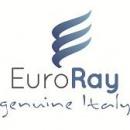 Logo dell'attività Euro Ray Incoming