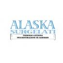 Logo dell'attività Alaska Surgelati S.r.l