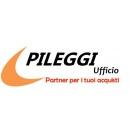 Logo dell'attività PILEGGI UFFICIO