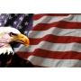 Logo Agenzia Investigativa Americana di Inv. Dott. Giovanni Fabbri