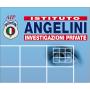 Logo AIP - ANGELINI INVESTIGAZIONI PRIVATE