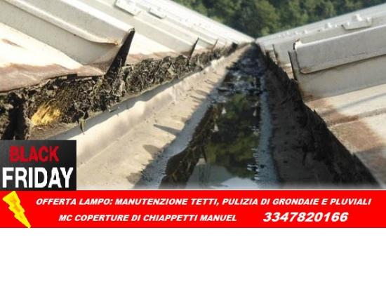 BLACK FRIDAY_MANUTENZIONE TETTI_PULIZIA DI GRONDAI...