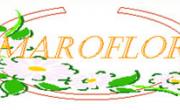 Bomboniere Matrimonio, Bomboniere Battesimo Comunione, Bomboniere Laurea Originali Online – Maroflor.it