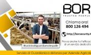 Furto sventato in azienda agricola a Castel Volturno (CE)
