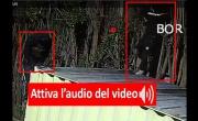Furto sventato presso azienda CLAMAR ITALIA Caserta (CE) - Sistema BOR Security - YouTube