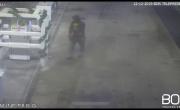 Tentativo di furto sventato presso un distributore di carburante - YouTube