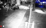 Ennesimo tentativo di furto dissuaso grazie al SISTEMA BOR in partnership con DSS Security! - YouTube