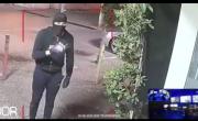 Banda di ladri prende di mira il Bar Tabacchi della stazione di SPARANISE, ma vengono messi in fuga – CasertaCE