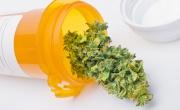 La mancanza di informazione, per le terapie sulla cannabis il peggior nemico