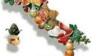 Giordano Soriani - Food Catering Stores Srl